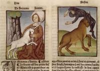 1501 - From Jardin de Sante - Cubas De Jean